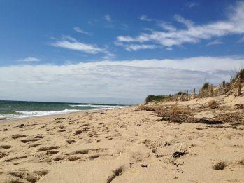 Beach near Provincetown, MA